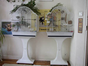conseils. Black Bedroom Furniture Sets. Home Design Ideas
